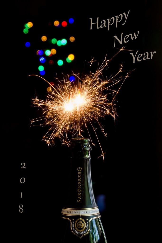 Happy New Year!  by salza