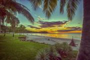3rd Dec 2017 - Flamingo Sunset Paradise