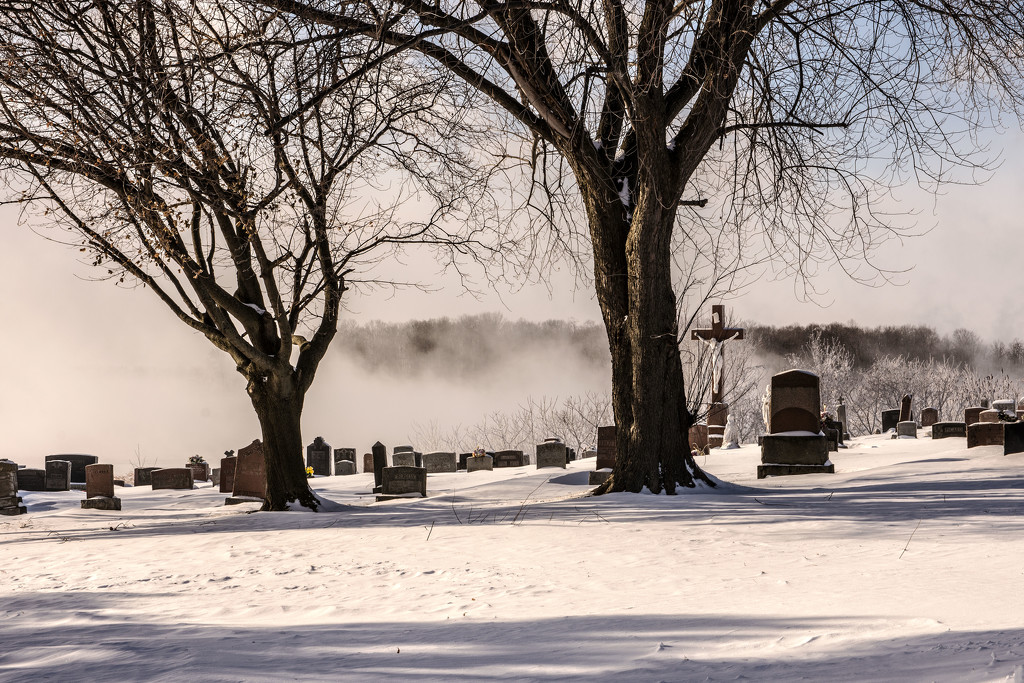 Cold Mist On the St. Lawrence by farmreporter