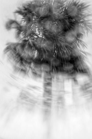 Oh, Baby-it's raining men!☔️💪 by joemuli