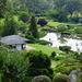 Japanese Gardens in Cowra by judithdeacon