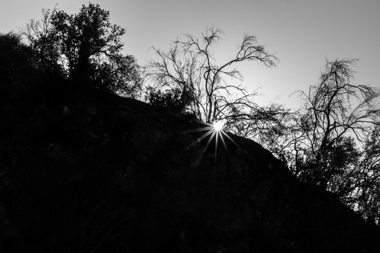 Hot Sun Climbing in the Canyon by jyokota