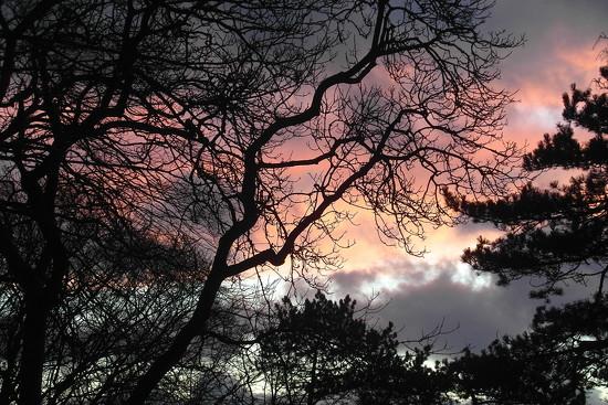 Red Sky at Night by redandwhite