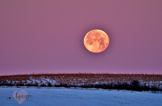 Morning Moon by lynnz