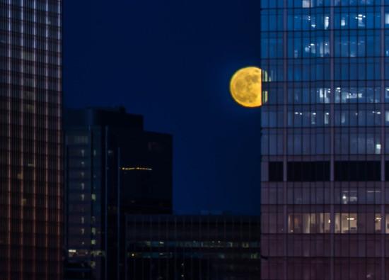 City Moon, Peeking Out  by jyokota