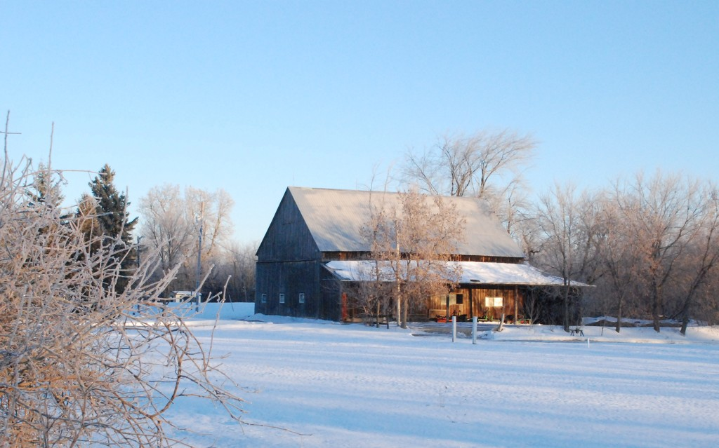 January Words - Resolution by farmreporter