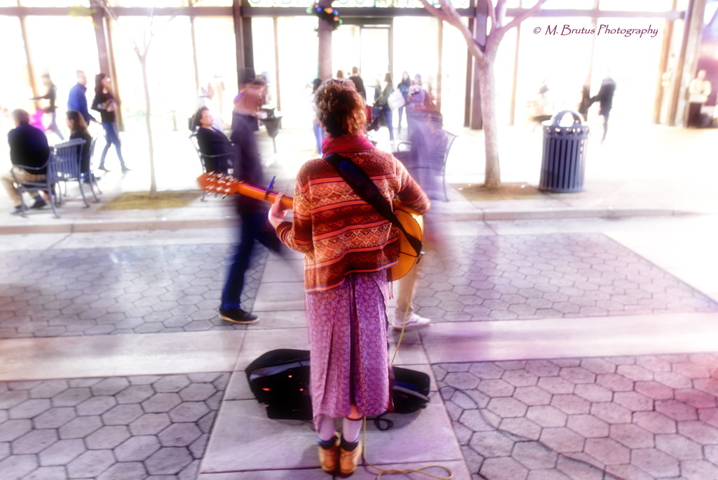 Troubadour by mbrutus