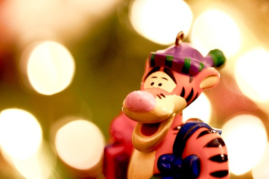 Tigger and bokeh.  by jnorthington