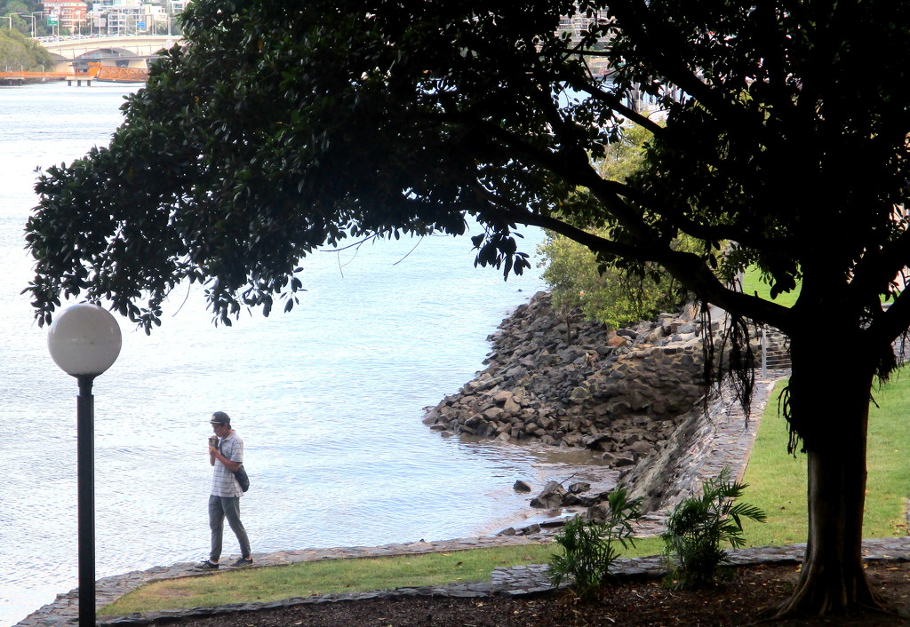 Along the  Brisbane River by 777margo