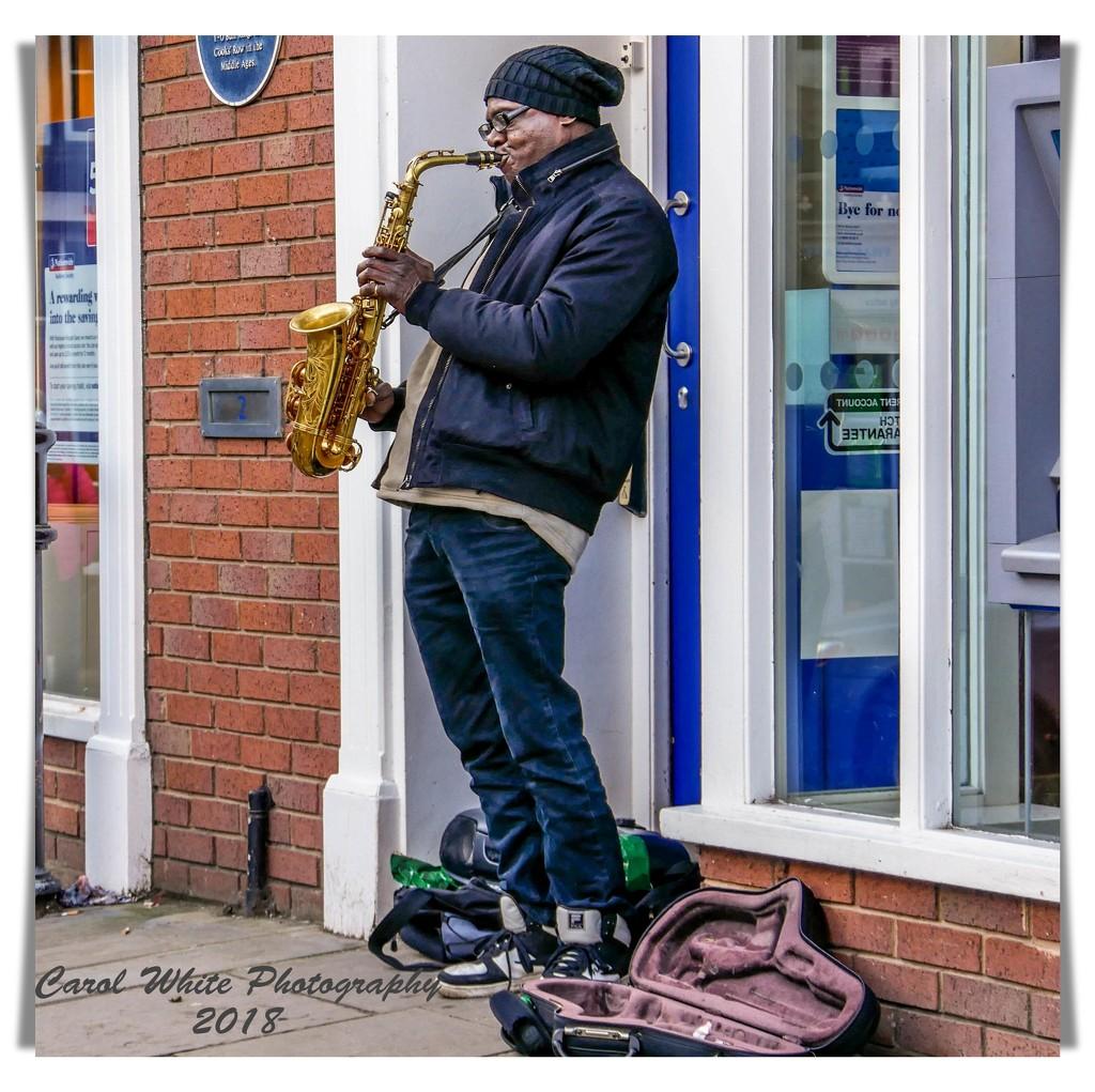 Street Musician,Ludlow by carolmw