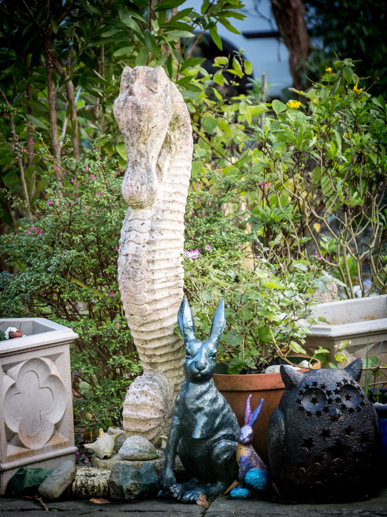 A garden menagerie  by swillinbillyflynn