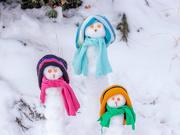 31st Dec 2017 - snowmen