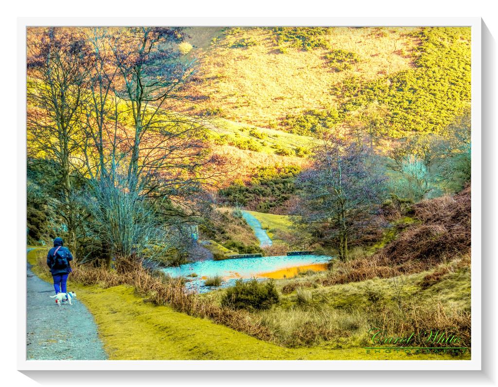 Carding Mill Valley by carolmw
