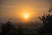 9th Jan 2018 - Sun Rising Through the Mist
