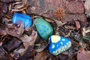 9th Jan 2018 - Last summer's painted rocks