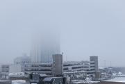 10th Jan 2018 - Fog