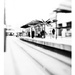 Tram station - St.Peter's Square by jocasta
