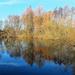 Reflections! by bigmxx