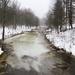 Scriba Creek