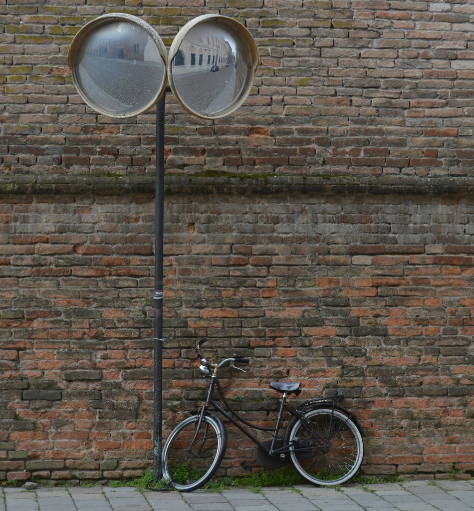Bicycle by caterina