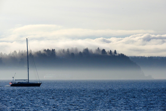 Misty Remnants by seattlite