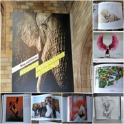 14th Jan 2018 -  Wildlife Photographer of the Year Exhibition