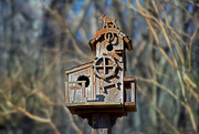 15th Jan 2018 - Neighbor's Birdhouse