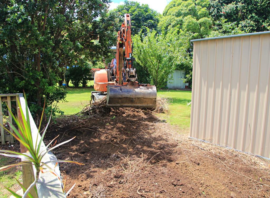 Gardening on a grand scale by kiwinanna