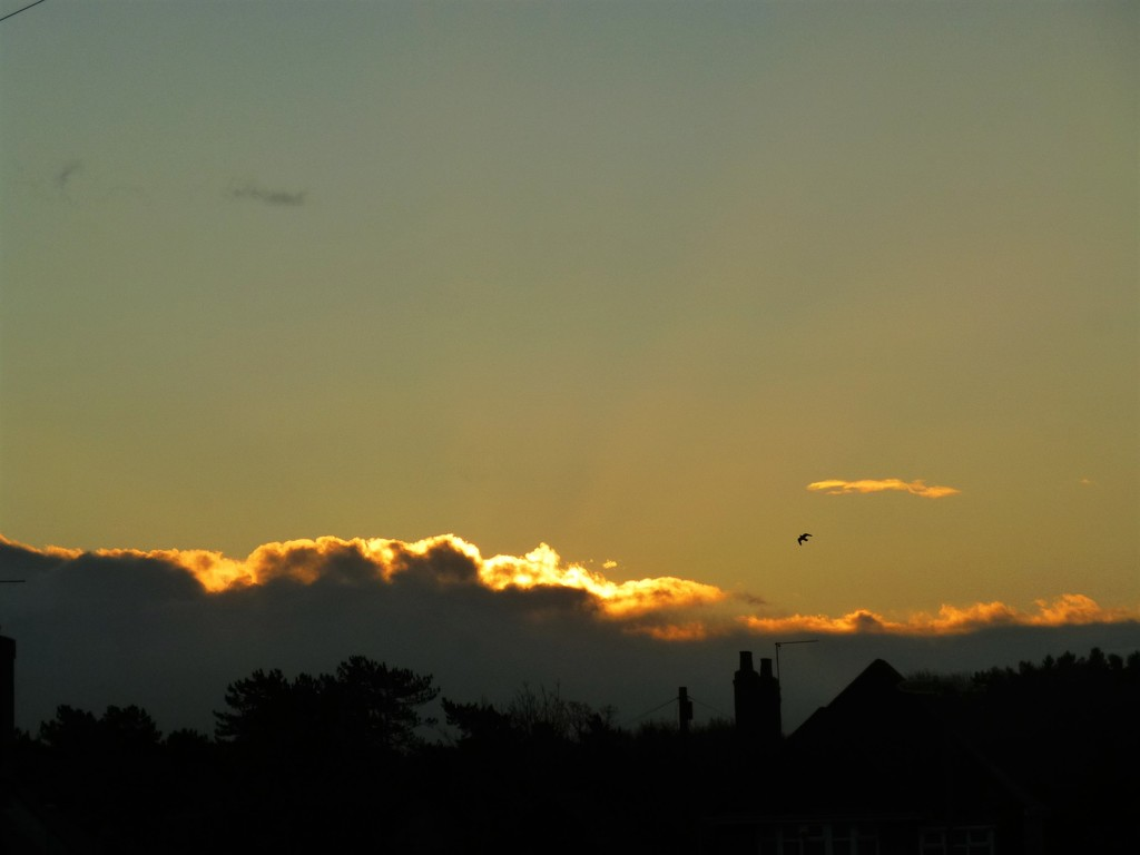 All Clouds Should Have Golden Linings by 30pics4jackiesdiamond