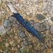 Fallen blue
