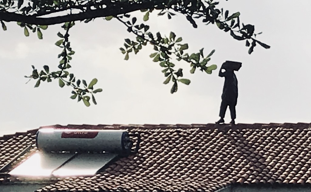 Man on a Rooftop by kareenking