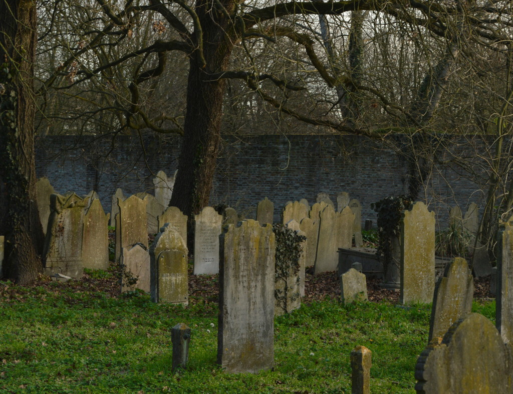 Jewish cemetery 3 by caterina