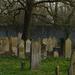 Jewish cemetery 3