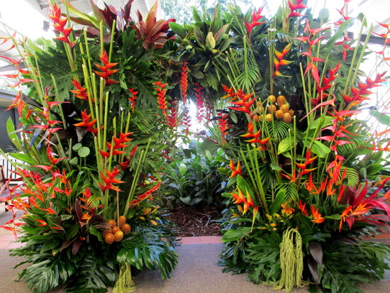 Welcome to the  Ginger Flower & food festival by 777margo