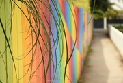 12th Jan 2018 - Rainbow Fence