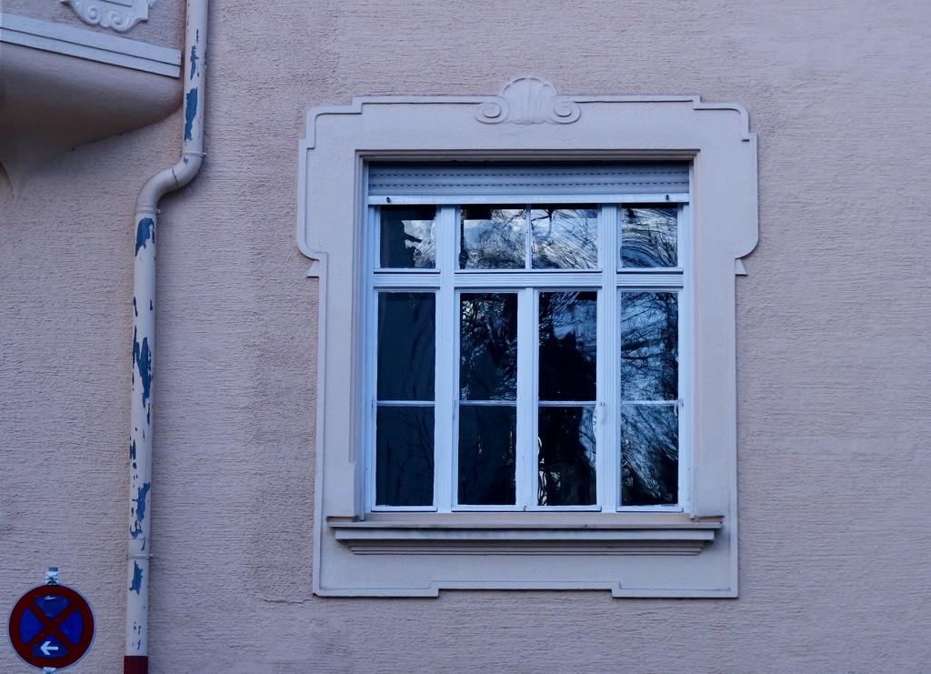 Window by toinette