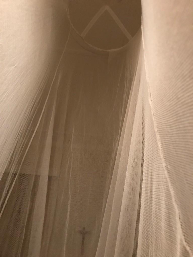 My First Mosquito Net by kareenking