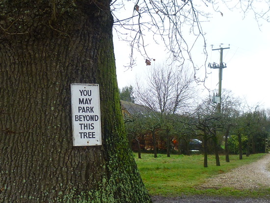 .............. but only if you're an apple tree? by 30pics4jackiesdiamond