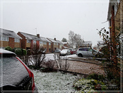 21st Jan 2018 - Another Snowy Morning