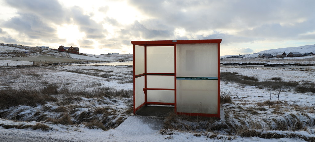 Icy Bus Shelter by lifeat60degrees