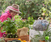 22nd Jan 2018 - At South Burnett Home Produce Share