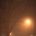foggy, foggy night