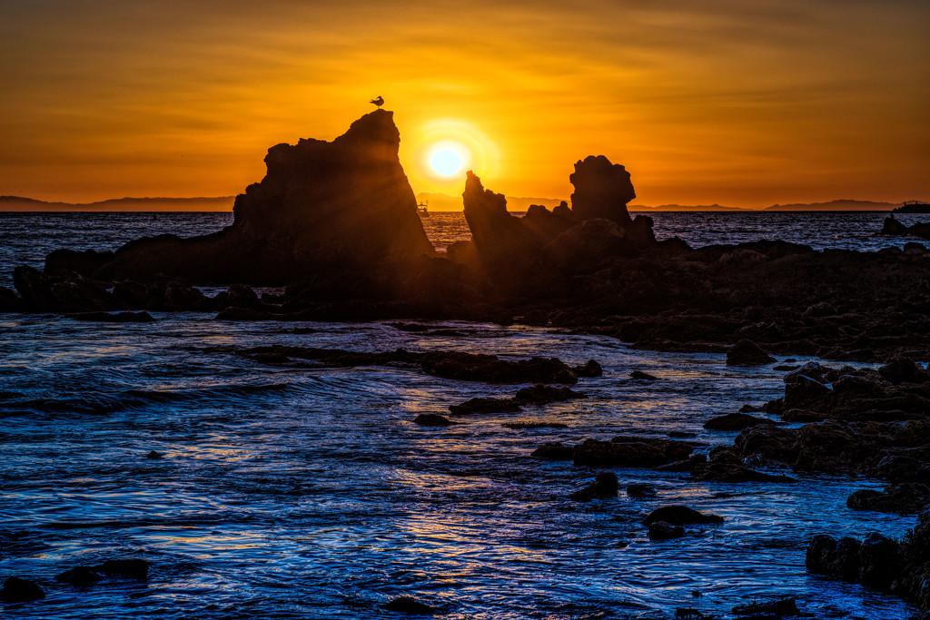 Corona Del Mar Sunset by stray_shooter