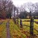 Higgeldy Piggeldy Fence