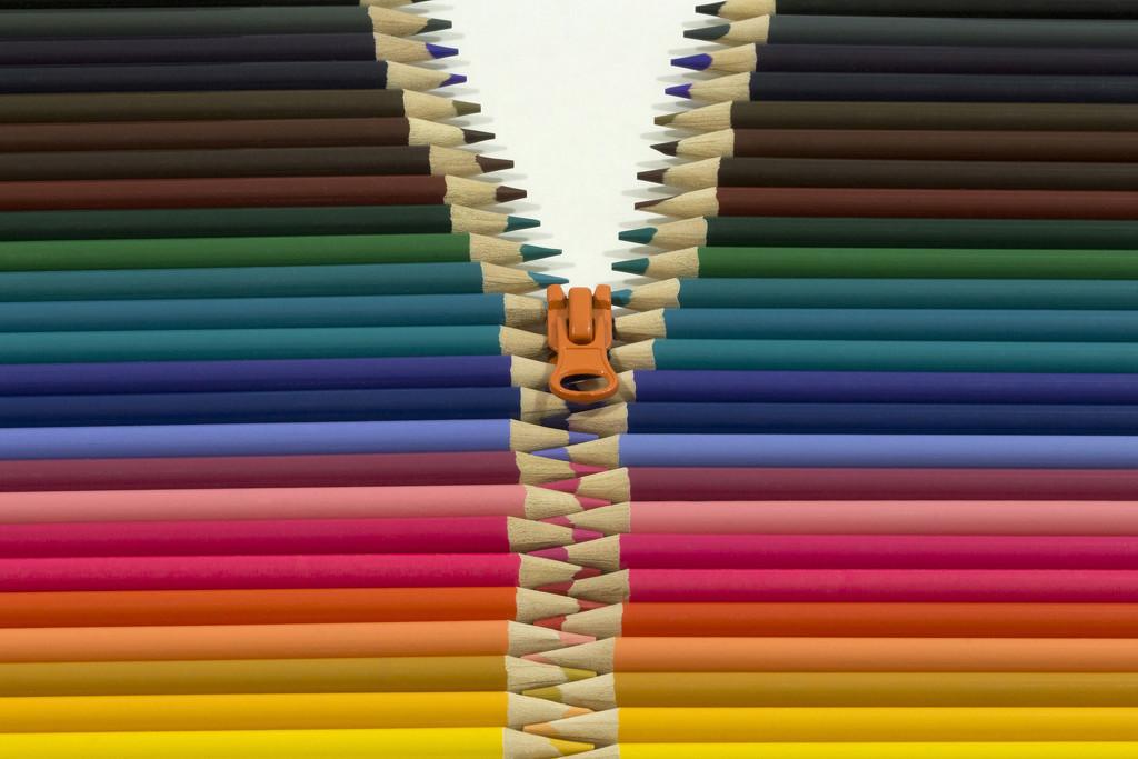 Zip It! by gaylewood