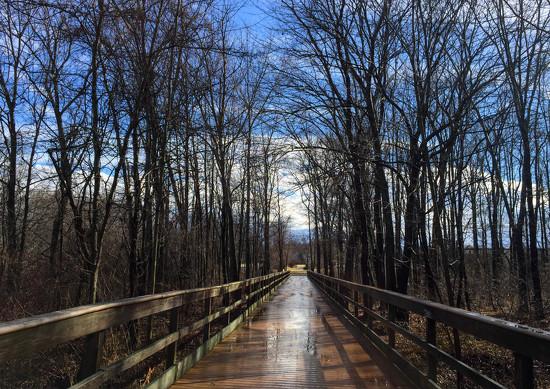 The Bridge by loweygrace