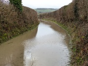 24th Jan 2018 -  Oops ............Good thing I've got my wellies on!