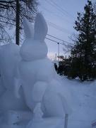 24th Jan 2018 - Snow Rabbit