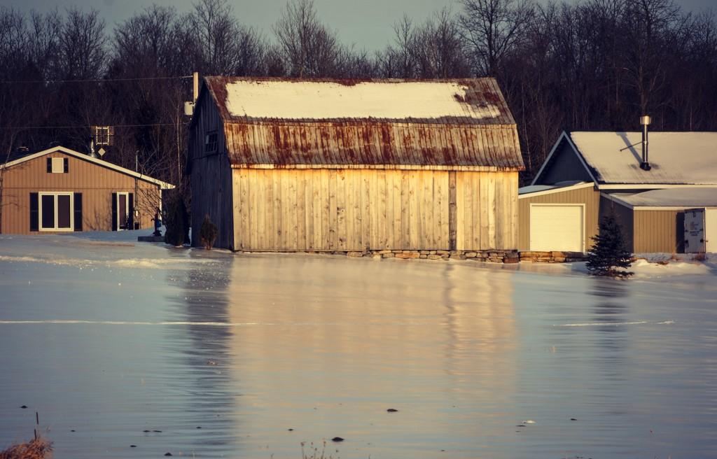 January Words - Reflection by farmreporter