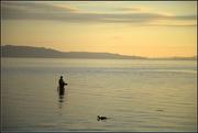 27th Jan 2018 - Trout fishing